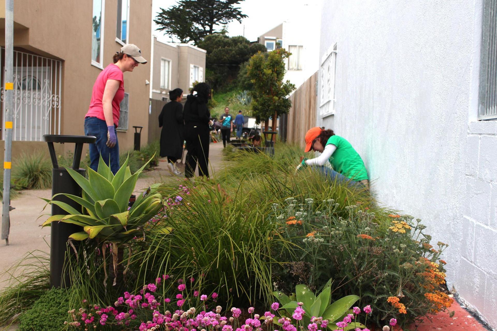 People gardening beside PLB solar pathway bollard - First Light Technologies