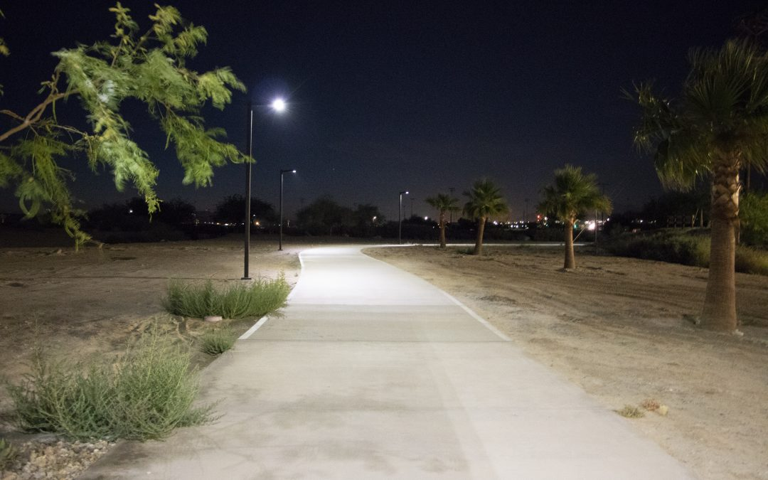 Solar Area Light Perfect for Desert Park Pathway