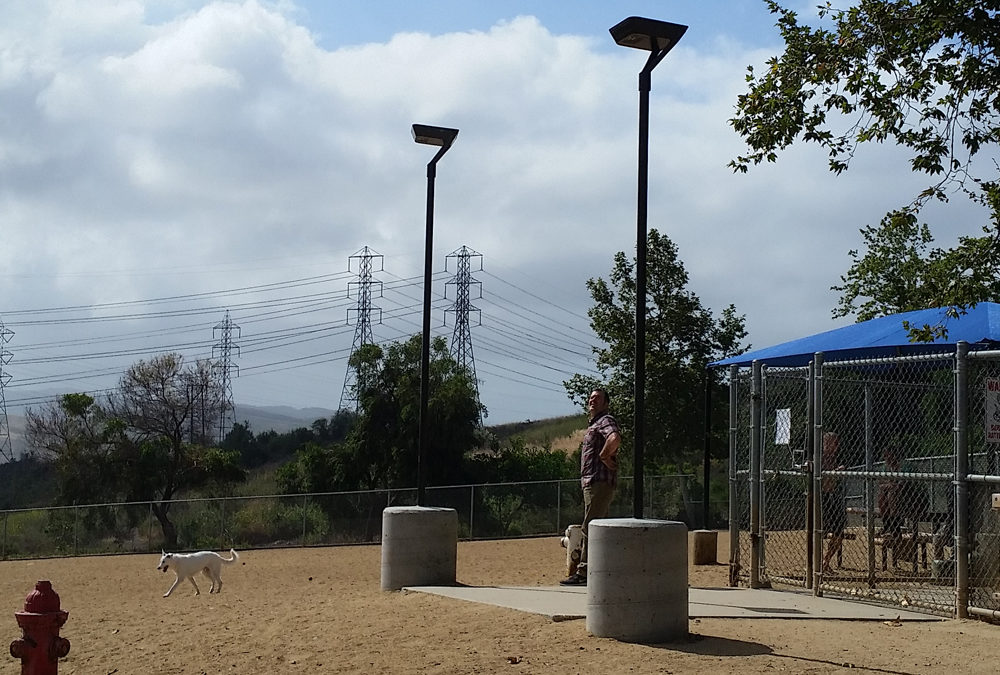 Popular Dog Park Lit With Solar Area Lights