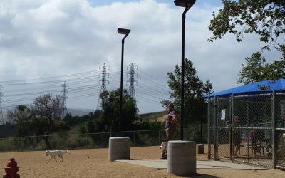 Popular Dog Park Lit With Solar Area Lights