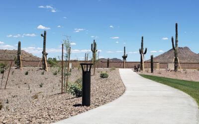 Solar is Lighting a New Community Pathway for 66% Less